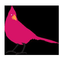 pink crow