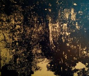 reflections+II jen b